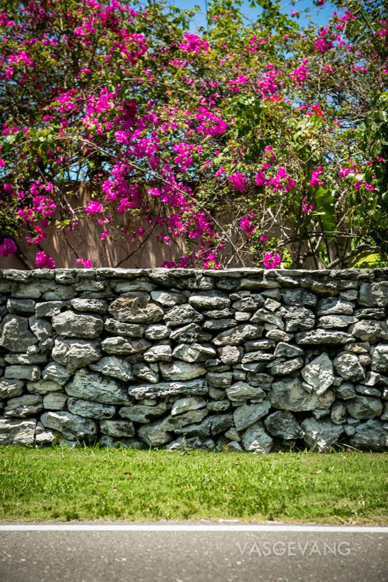 bahamas2014-web-3673.jpg