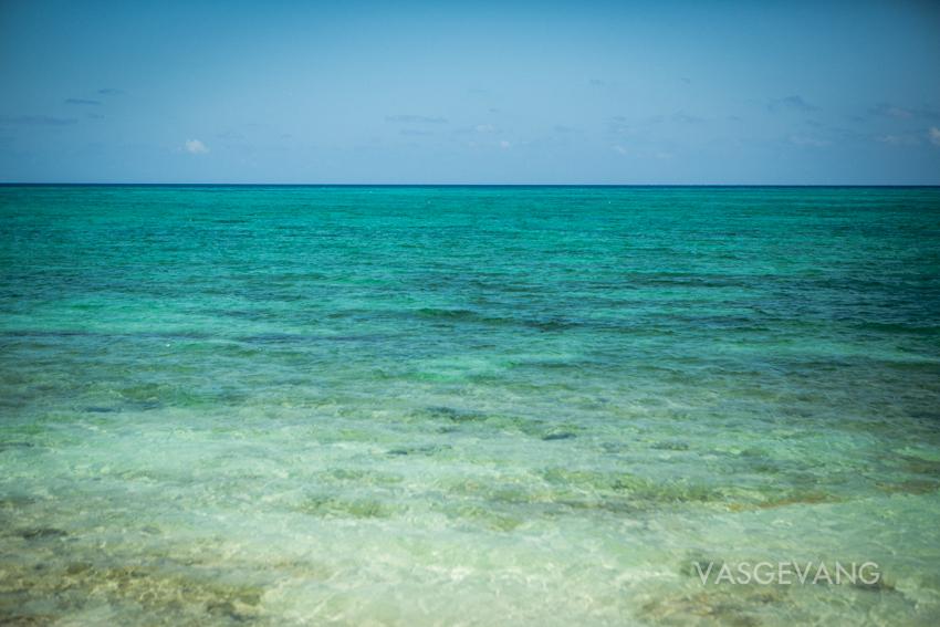 bahamas2014-web-3654.jpg
