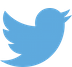 Twitter_logo_blue-sm.png