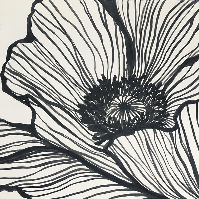 I'm so happy with how my new botanical ink study series is turning out! If you like what you see, do me a favor and vote for Ms. Poppy ✍️ link in my bio! I entered the first 2 in this series in the @minted x @westelm New Perspective wall art challenge 🤞🤞 🤞 Lmk what you think! 💕 More to come.... #kellymuschianaillustration #ink #inkart #illustratorsoninstagram #botanicalillustration #botanicalartist #artrepreneur #calledtobecreative #artistmom #lovelysquares #flowerstagram #flowerobsession #poppy