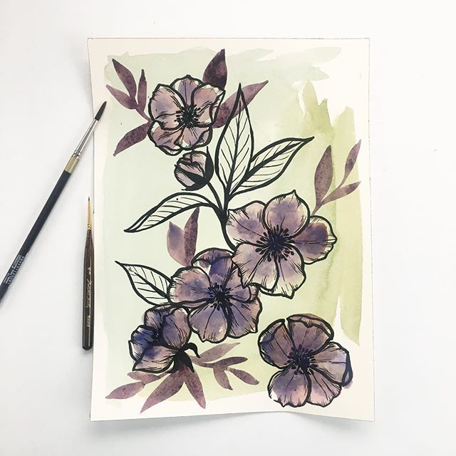 More from my Inky Floral Studies series - Hellebore (aka Christmas rose!) 💜 Swipe 👉 for a detailed shot #kellymuschianaillustration #botanicalillustration #botanicalart #illustratorsofinstagram #dsart #watercolor #inkdrawings #hellebore #floralart #floralpainting #artrepreneur #handpainted