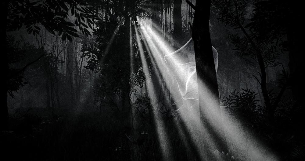 FOREST-SCENE.jpg