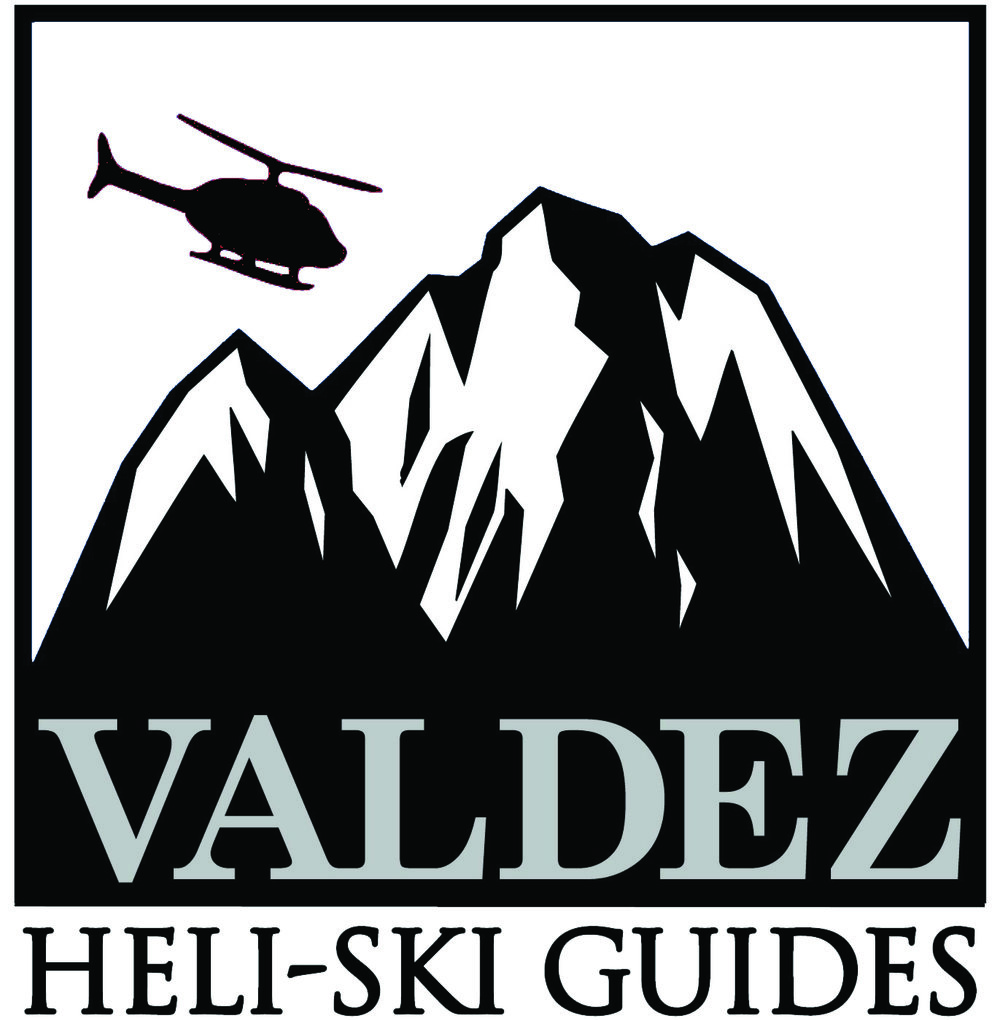 VHSG-Logo-fix.jpg