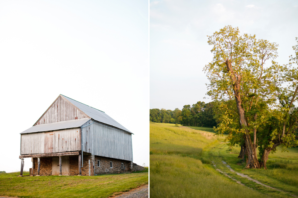 1-Barn-Tree-Light-Open-Field-Ken-Bruggeman-Photography-Family-Portraits-York-PA.jpg