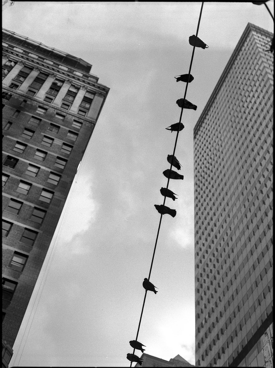 Kodak 400TX - New York, NY  - 2014 © Ken Bruggeman Photography