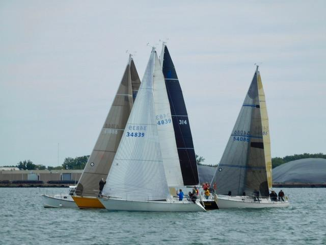 Circe's Black Magic jib makes her first appearance in a Champion of Champions race…as we hold back behind the committee boat watching Blue Streak and Abra cross over early.