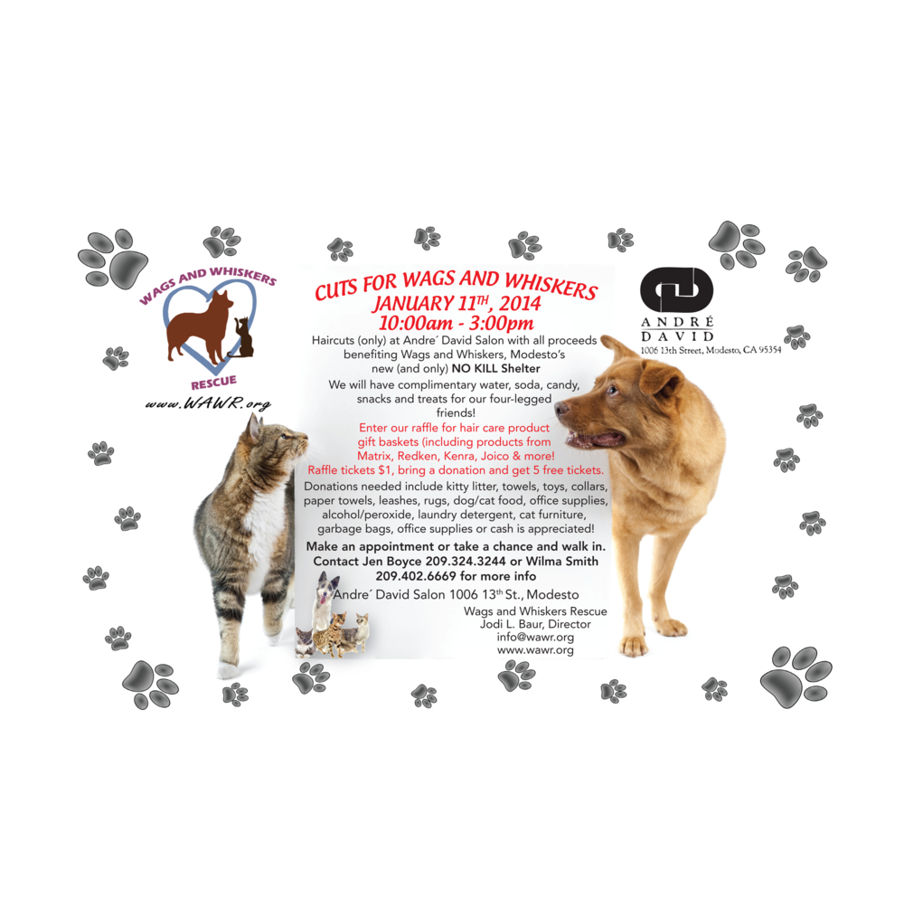 Wags & Whiskers Postcard Flyer