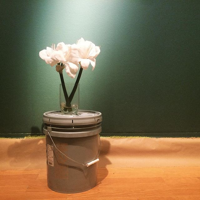 #Lafayette #Green #flowers #buckets #redshirtcollective #prepwork #artmuseum