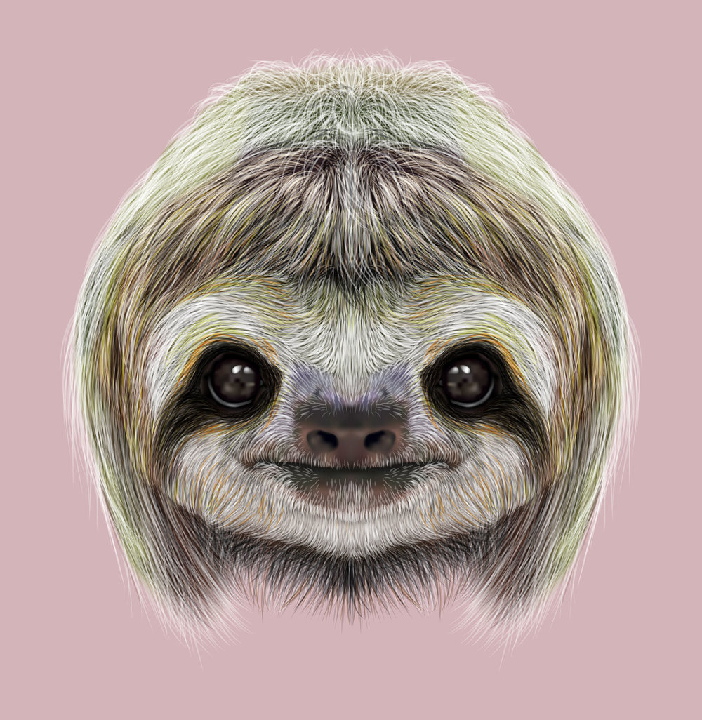 54946756 - cute face of tropical three-toed sloth on pink background.