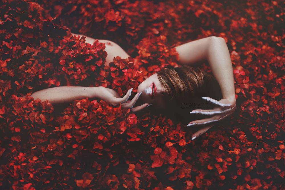 sam-kaczur-mic-flower_34592.jpg