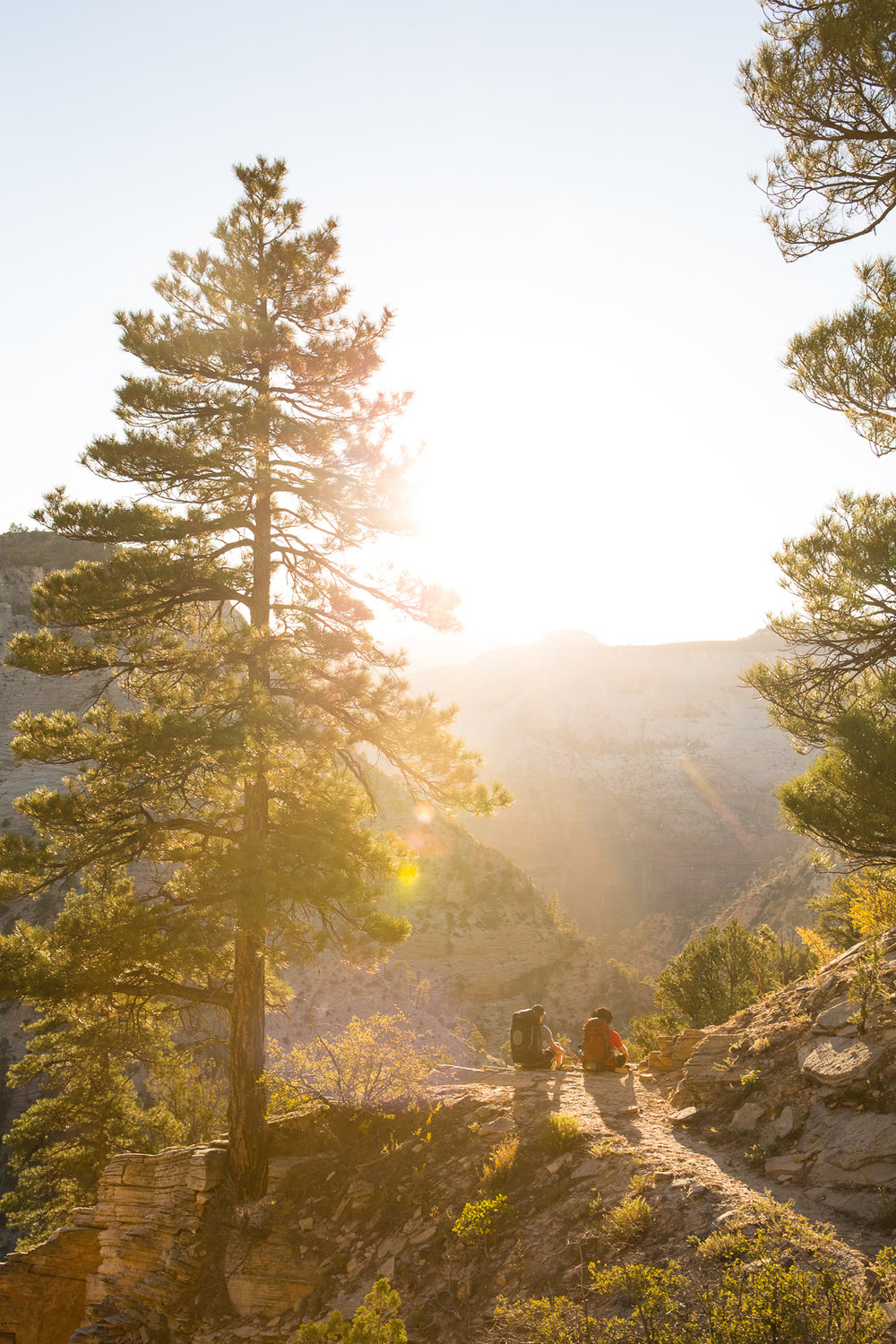 Backpacking East Rim Trail in Zion National Park