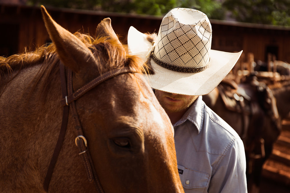 Cowboy Work at Red Cliffs Lodge in Castle Valley, Utah