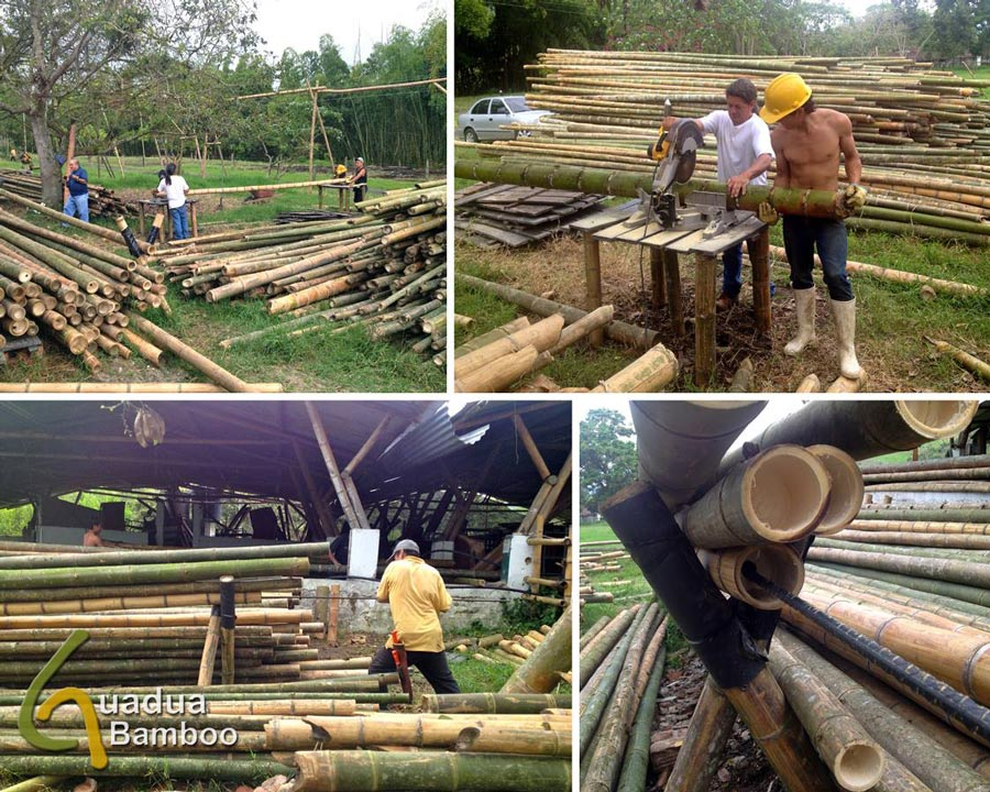 Cutting and Perforating Bamboo Poles