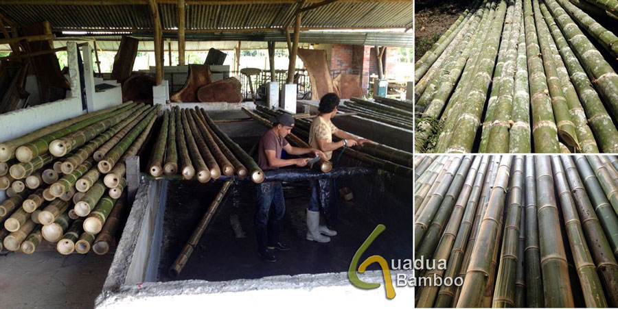 Washing Bamboo Poles