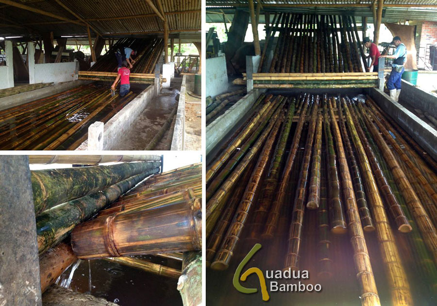 Bamboo Poles Treatment Tank