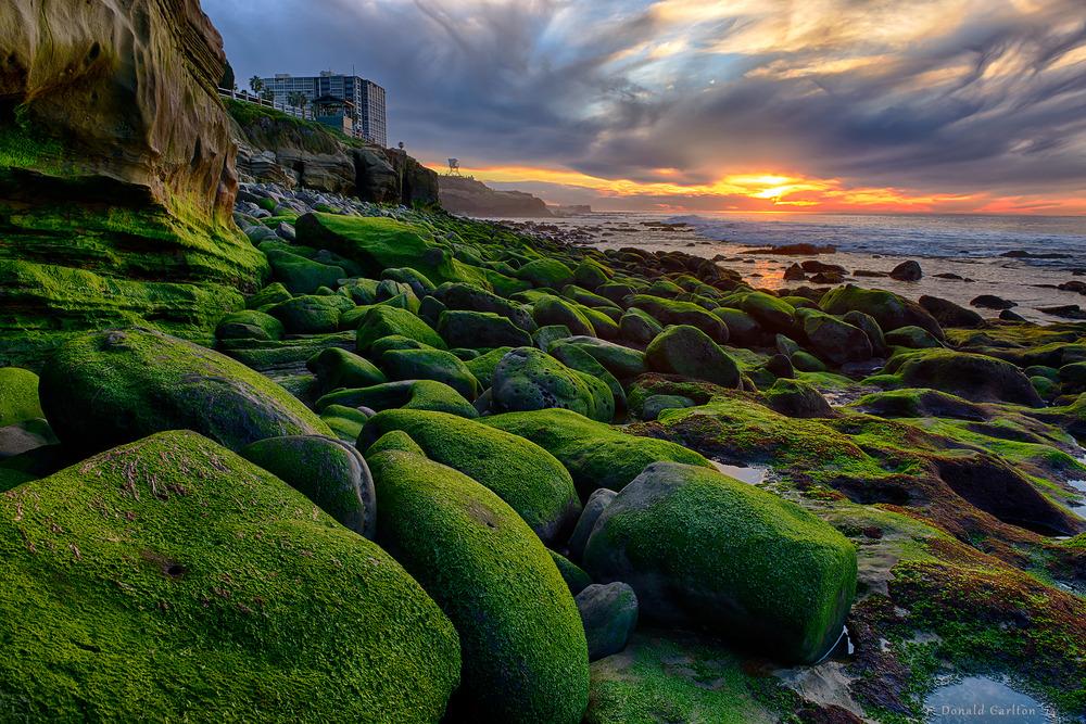 Donald_Carlton_Landscape-005.jpg