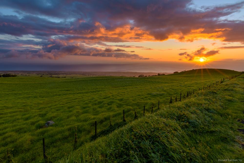 Donald _Carlton_Landscape-020.jpg