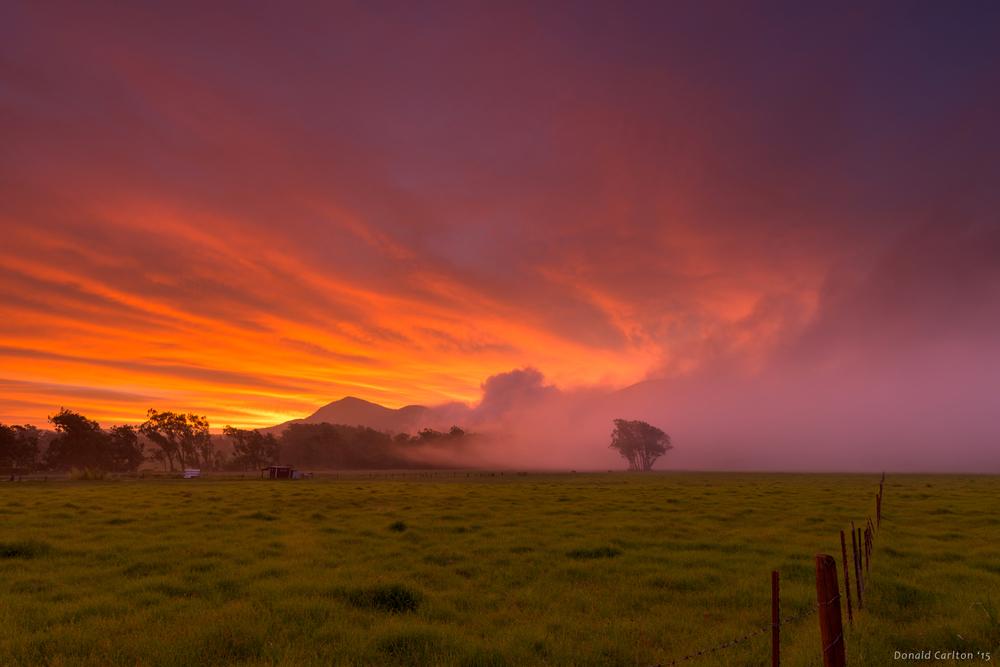 Donald _Carlton_Landscape-032.jpg