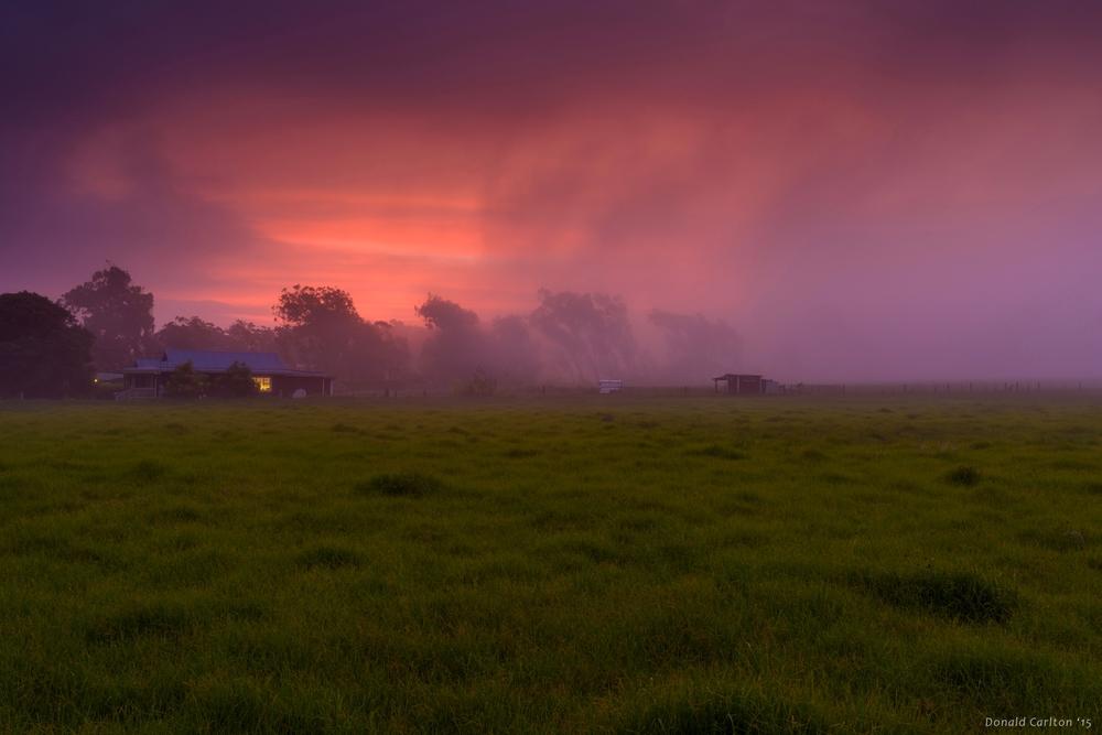 Donald _Carlton_Landscape-033.jpg