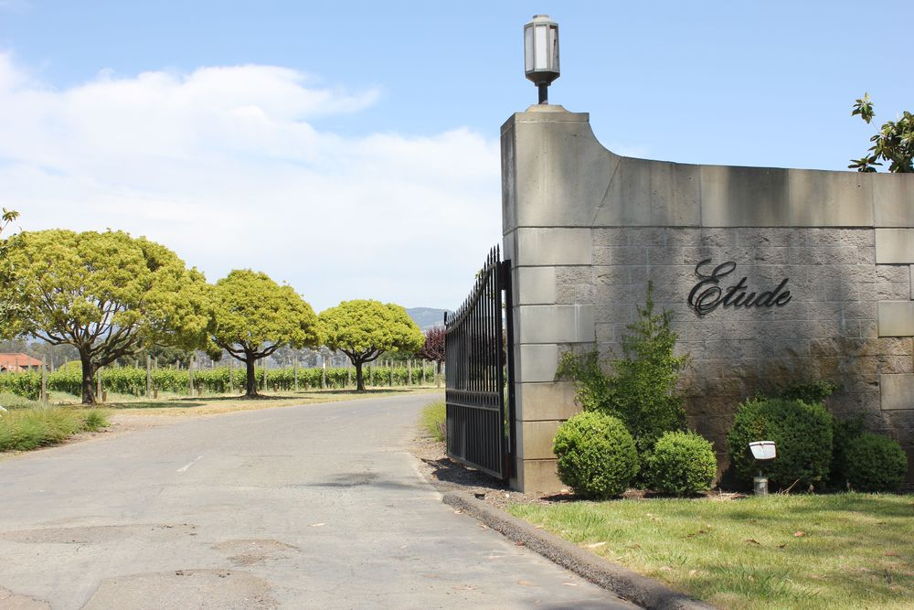 etude winery 1