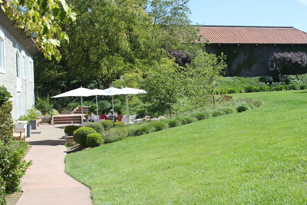 etude winery 5 napa valley