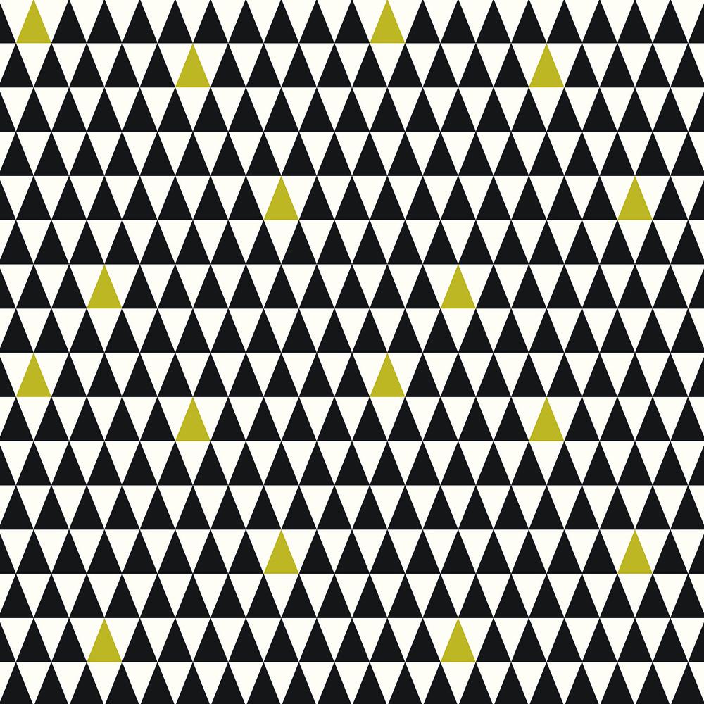 Black + White Triangles