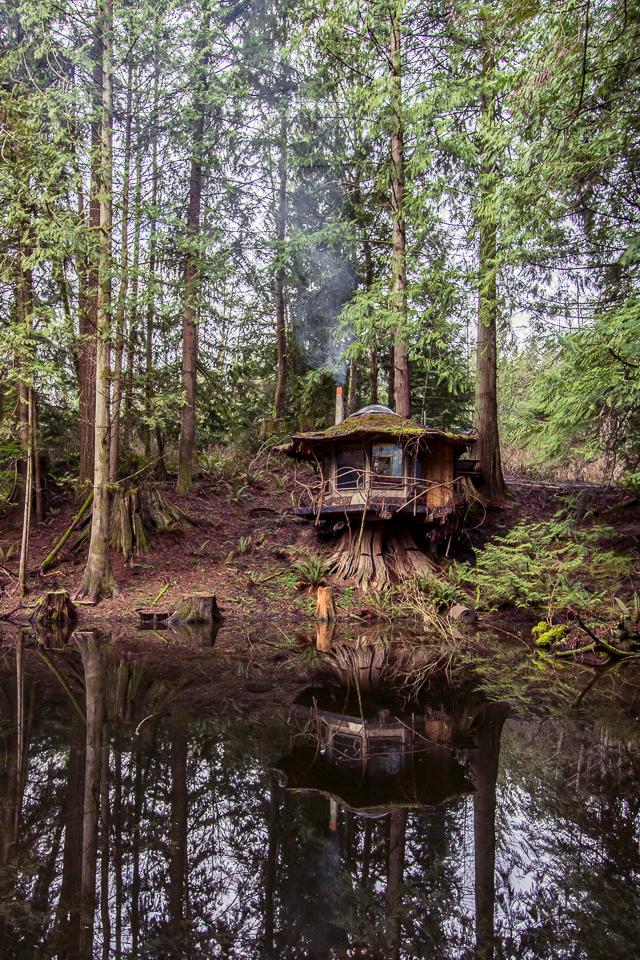 The Stump House. Old-growth stump as foundation, set on the banks of a lake Sun Ray built.
