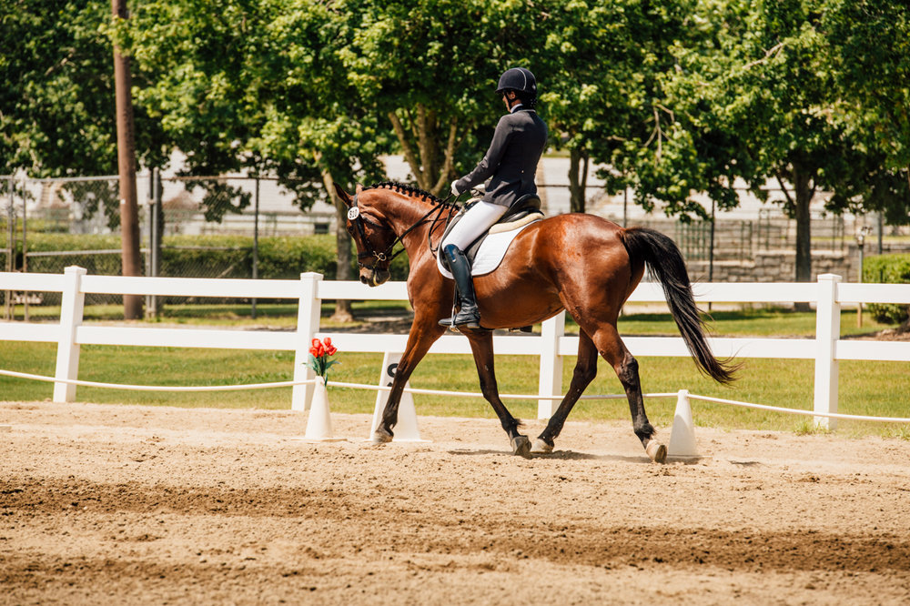 Rachael Renee Horse Photography Web-7.jpg