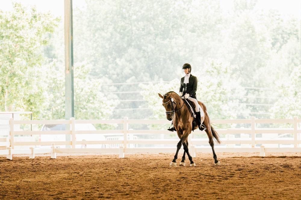 Rachael Renee Horse Photography Web-20.jpg