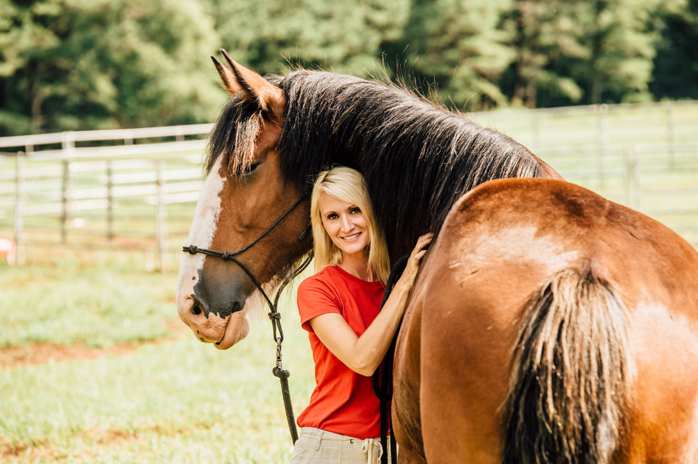 classic city clydes horse photographer rachael renee photography Web-52.jpg