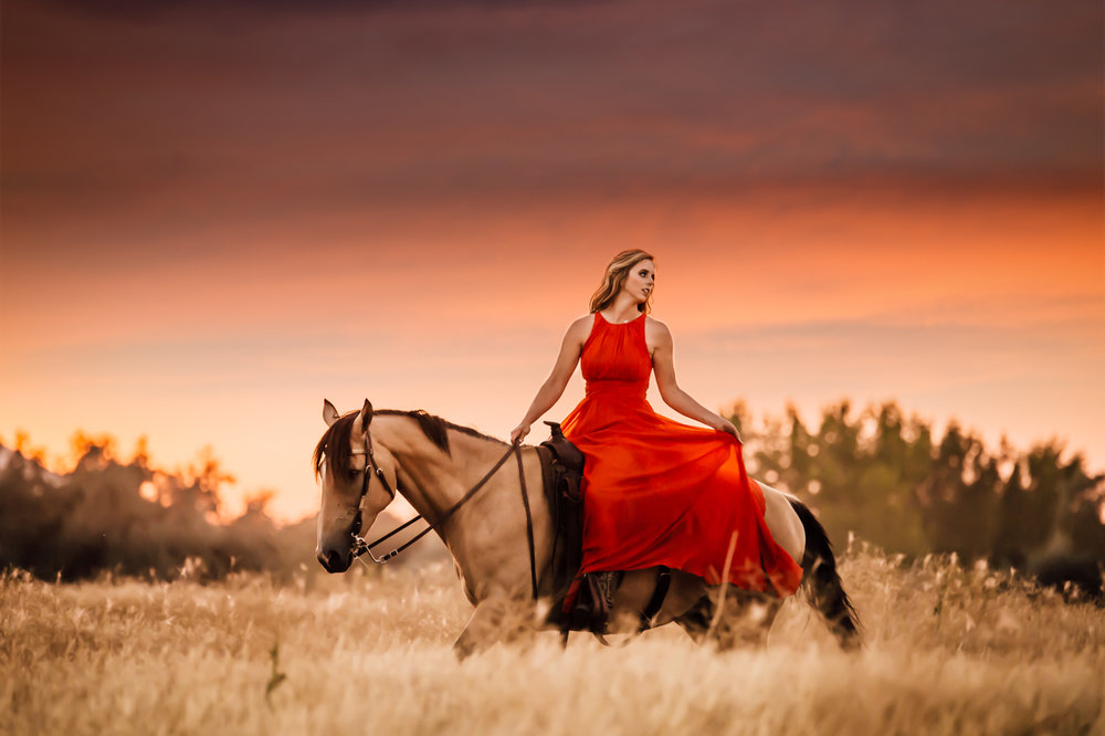 leslie brown athens horse photographer rachael renee photography Web-45.jpg
