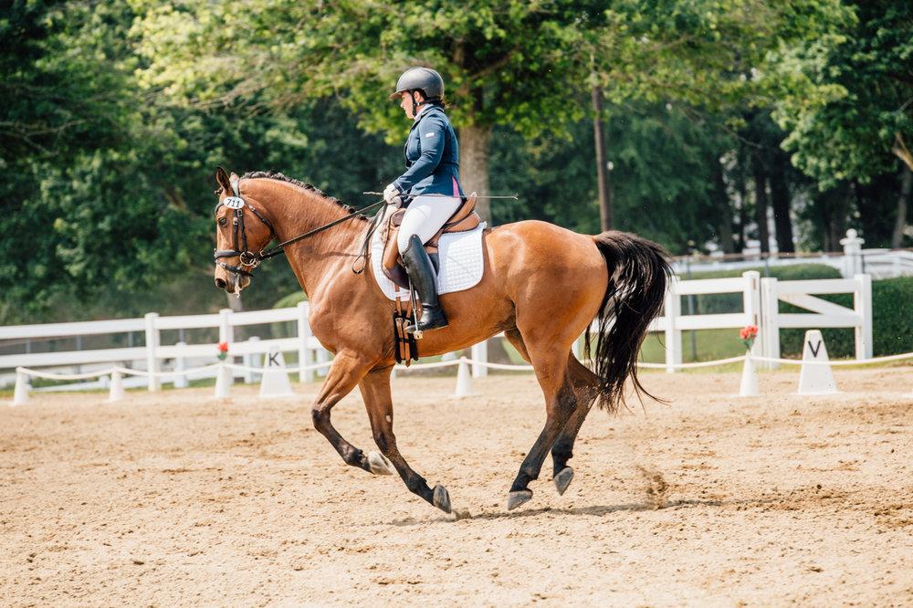 Rachael Renee Horse Photography Web-14.jpg