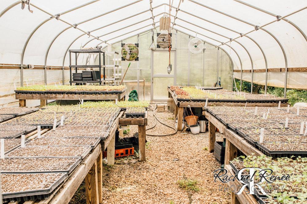Elm St Gardens or Oasis Family Farm Web-23.jpg
