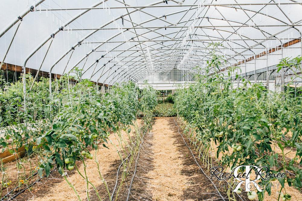 Elm St Gardens or Oasis Family Farm Web-33.jpg