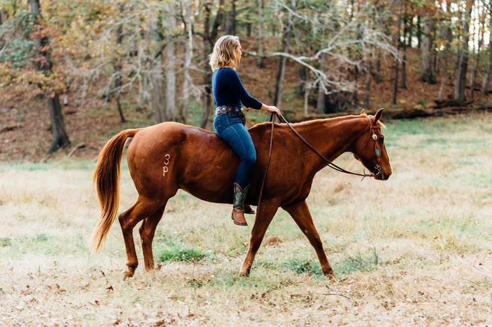 jessica and conan - rachael renee photography athens equine photography Web-29.jpg