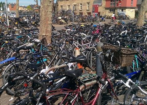 Cambridge - Bikes 1.jpg