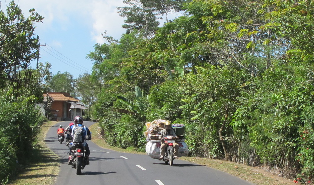Wide load on one of Bali's backroads