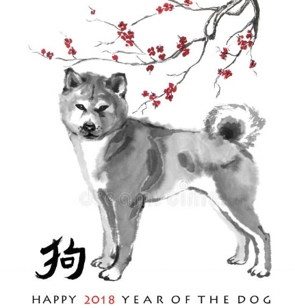 2018 Dog.jpeg