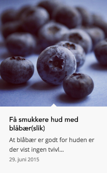 blåbær slik tanja eskilden hud holistisk wuhuw
