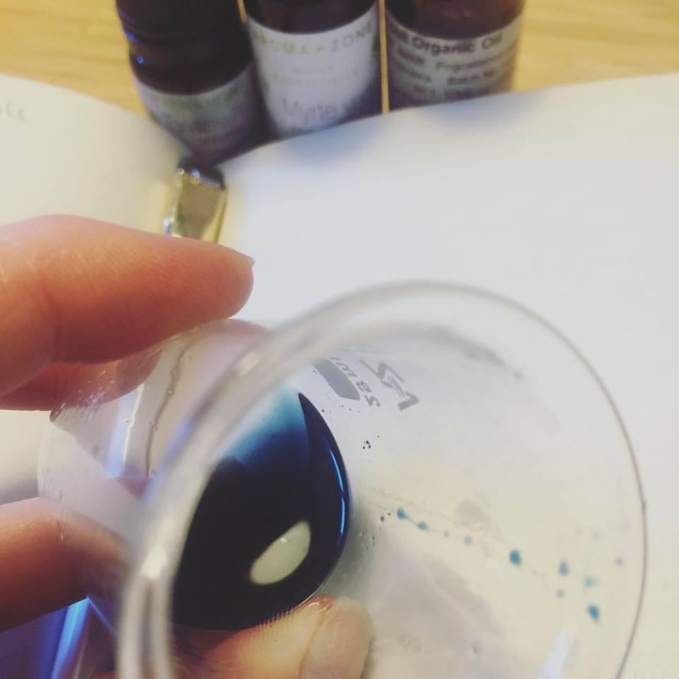 blue tansy aromaterapi