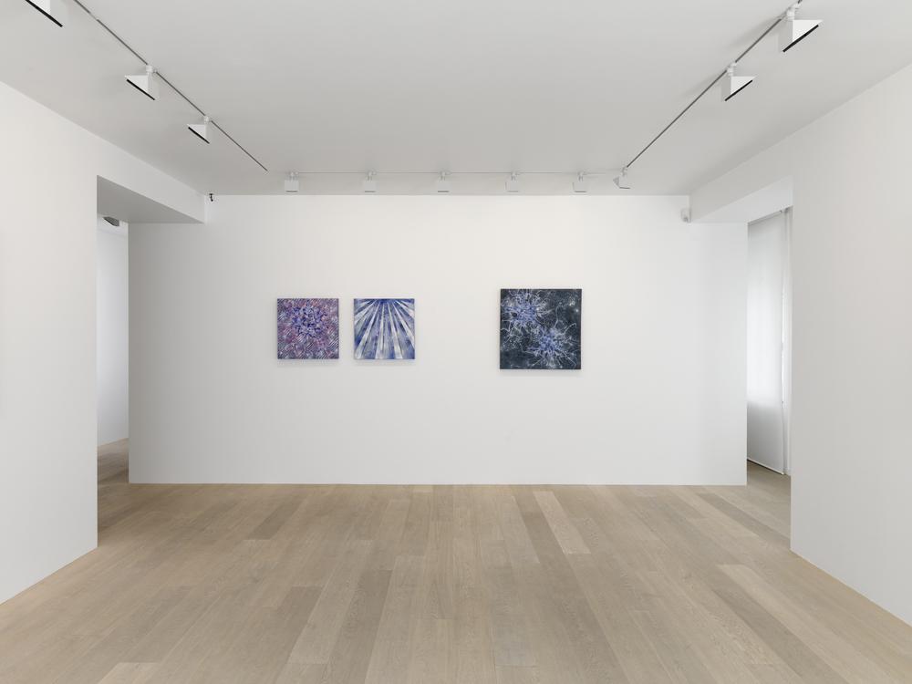 Gagosian Gallery, Geneva - Alberto Di Fabio - 2014