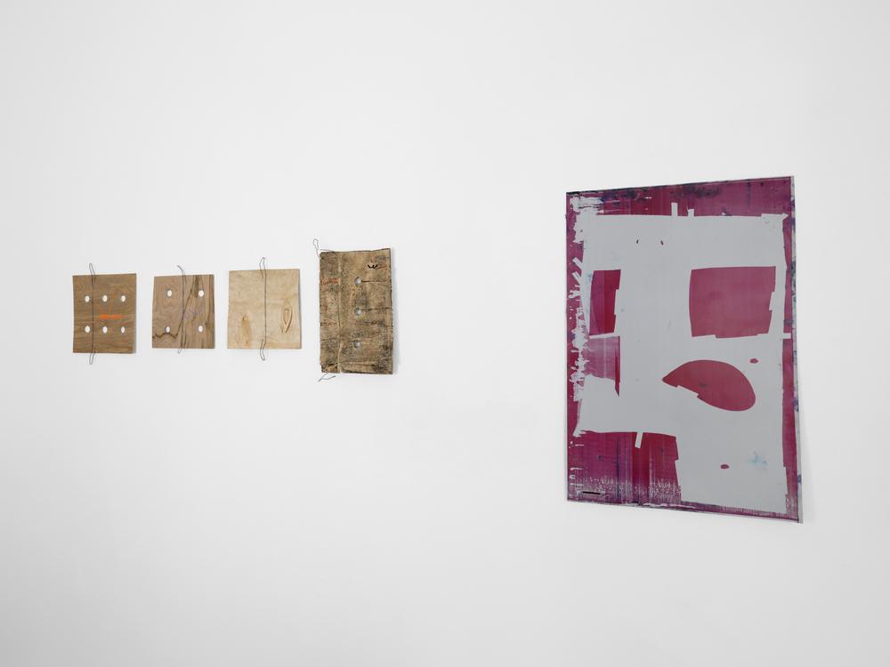 ribordy contemporary, Geneva | Ryan Foerster | 2013