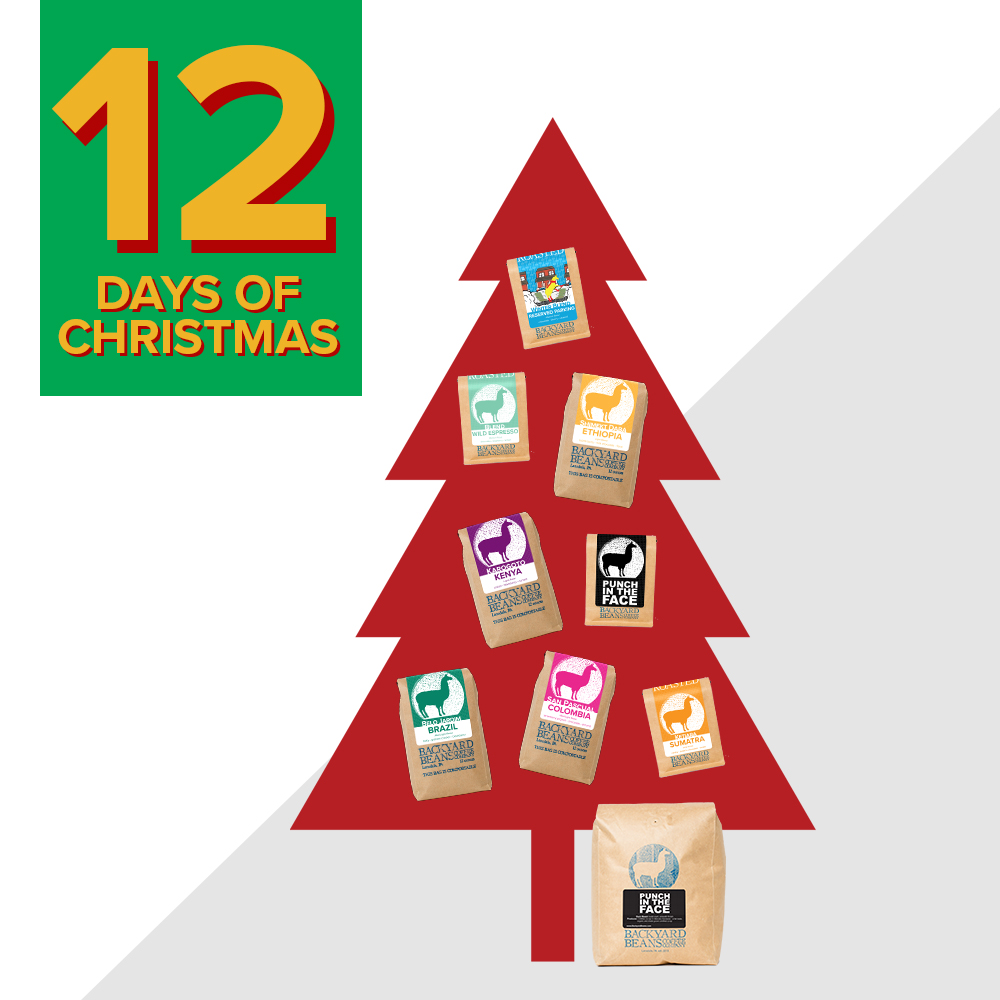 12 Days of Holiday Deals