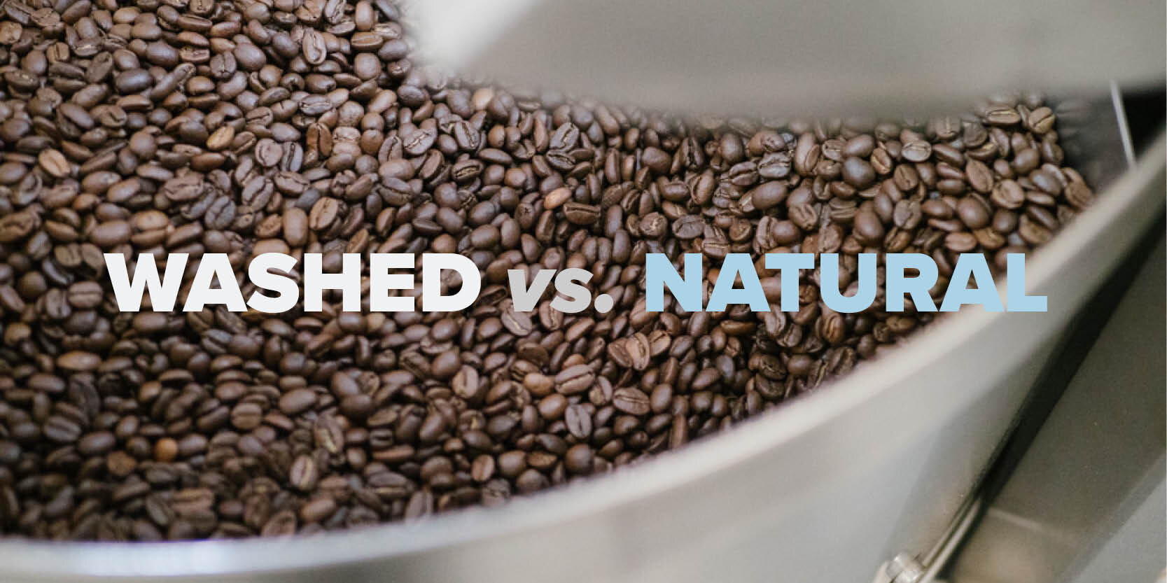Coffee Washed Vs Natural Process Backyard Beans Coffee Co