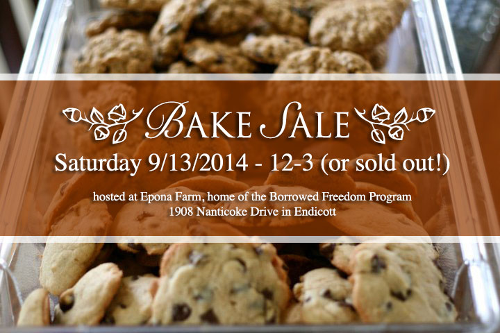 Borrowed Freedom benefit bake sale 9/13/2014 click to visit BFEAT for more info