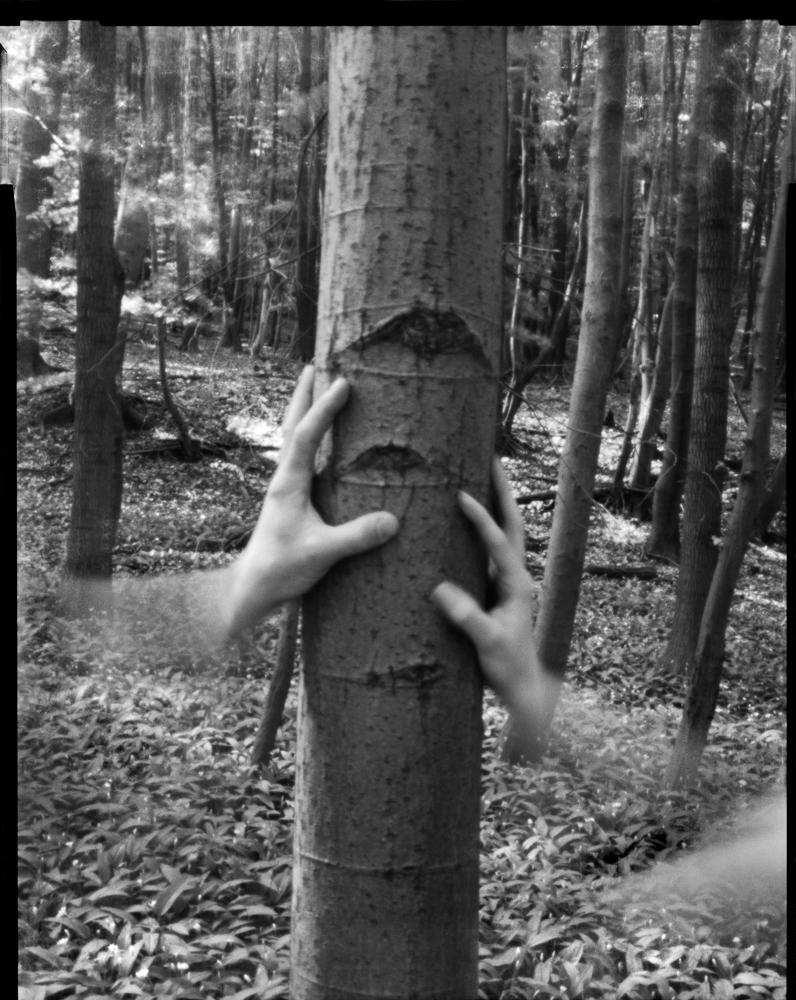 hand gemenge (scuffle) / exposure time 00:02:00 / © 2013 svemart