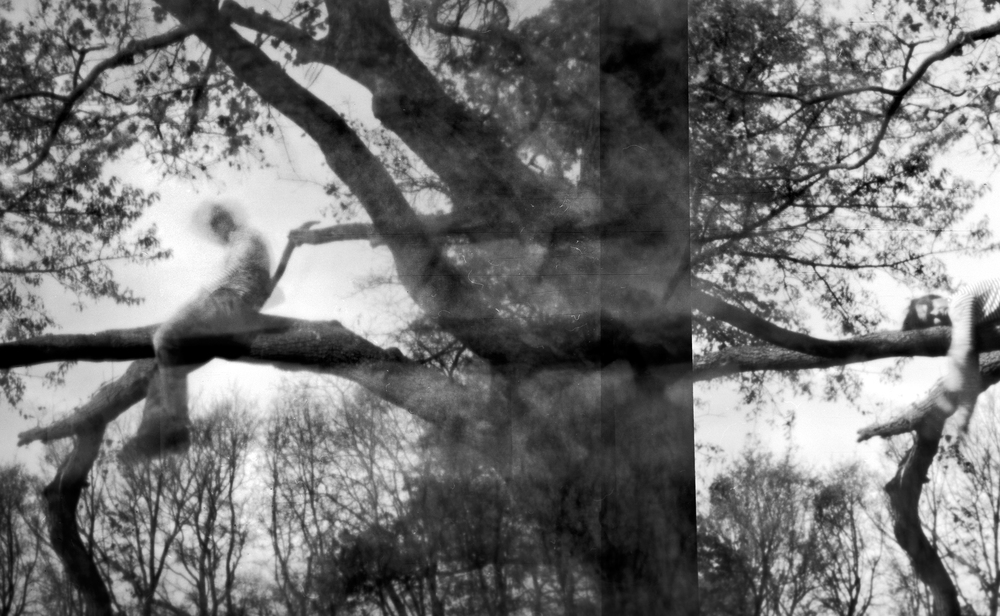 schlaf anfall double exposure á 00:00:30 © 2014 svemart