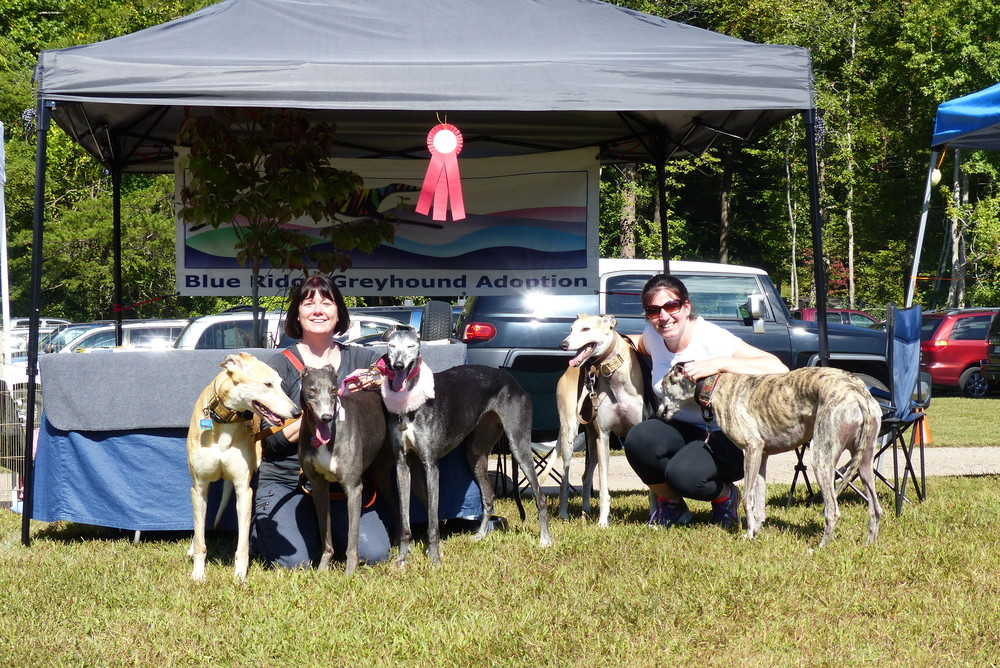 Wendy Ott  and Christine Patenaude pose with Abe, Juliet and Ellie and Solo and Gracie. The red ribbon is the second place ribbon won by Juliet in the hound group in the Dog Mart Dog Show!