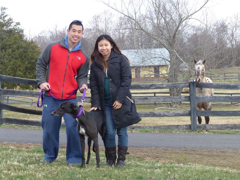 Eugene Su and Yueh Yee Wong pose with their new girl, Sally, as Roxie the Appaloosa looks on.