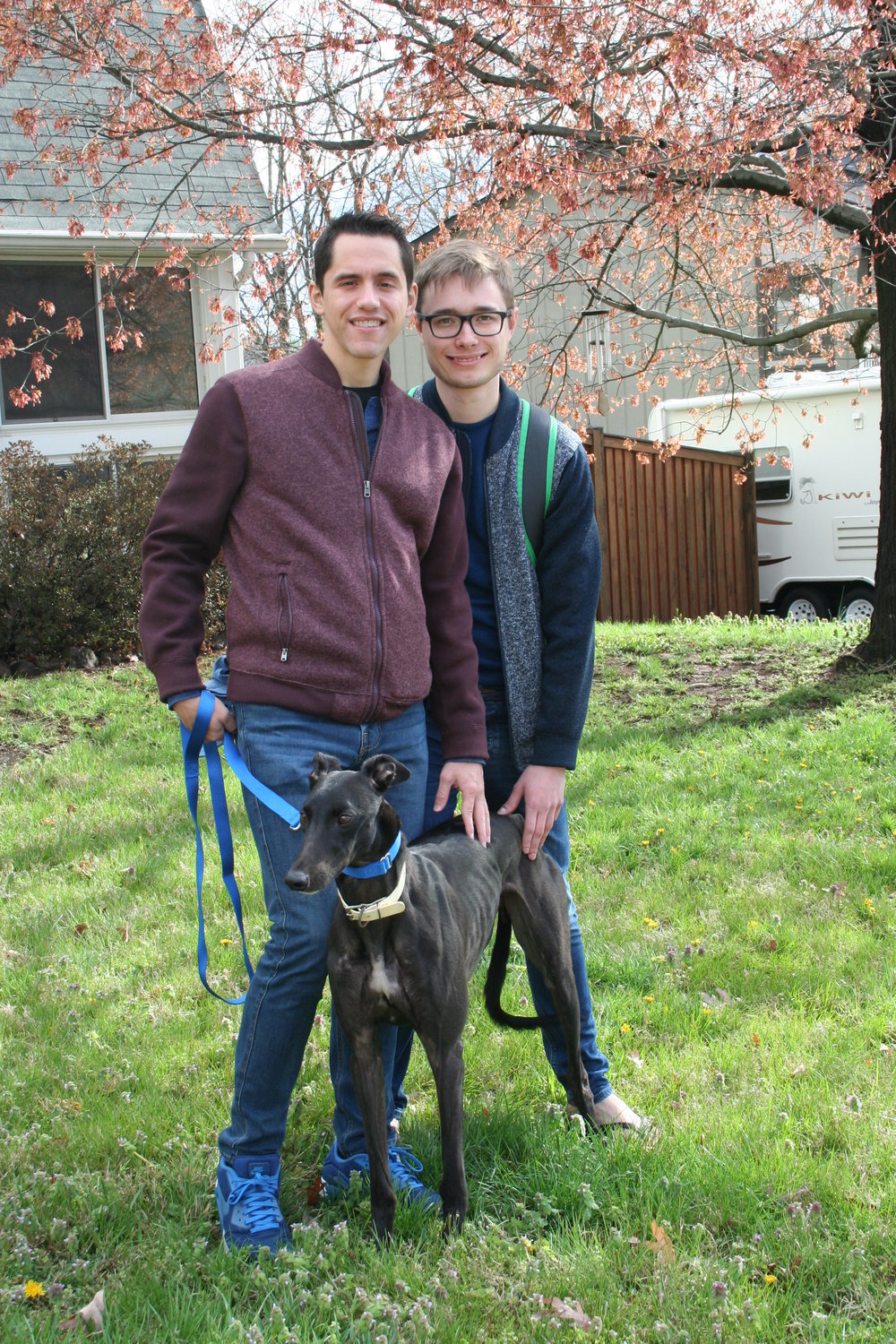 Oleg and his partner Ramon adopted a large beautiful black male. He was called Re Mote but now has a new name, Polaris.